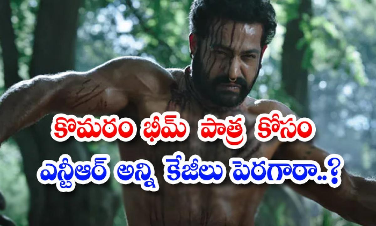 Jr Ntr Opens Up How He Trained For Komaram Bheem Role-TeluguStop.com