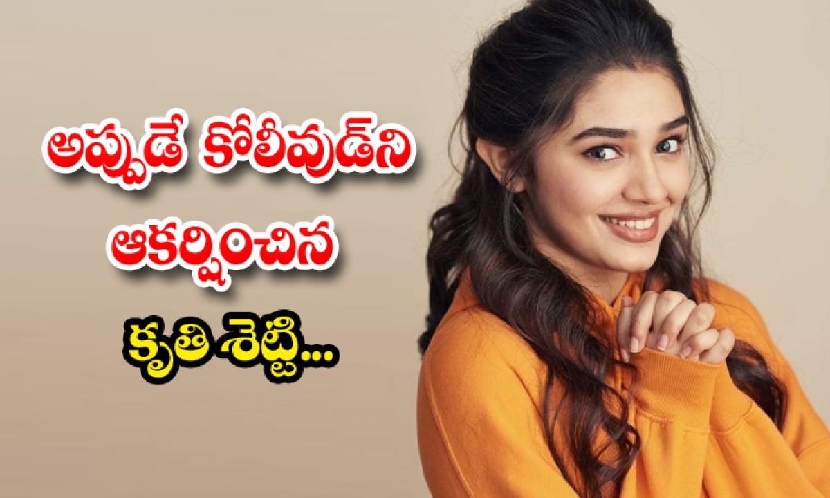 Krithi Shetty Kollywood Entry With Dhanush Movie-TeluguStop.com
