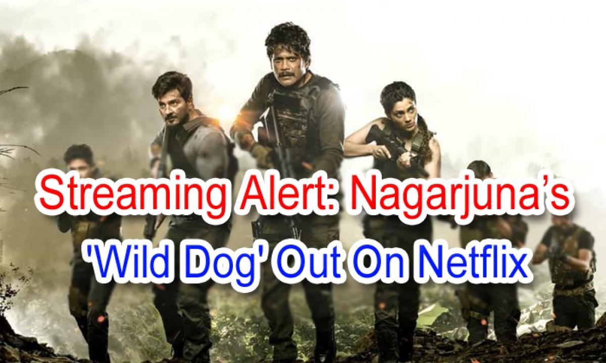 Streaming Alert: Nagarjuna's 'wild Dog' Out On Netflix-TeluguStop.com