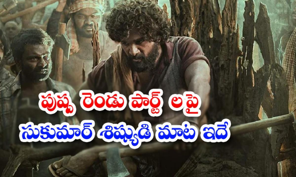 Allu Arjun Pushpa Movie Not Releasing In Two Parts-పుష్ప' రెండు పార్ట్ లపై సుకుమార్ శిష్యుడి మాట ఇదే-Latest News - Telugu-Telugu Tollywood Photo Image-TeluguStop.com