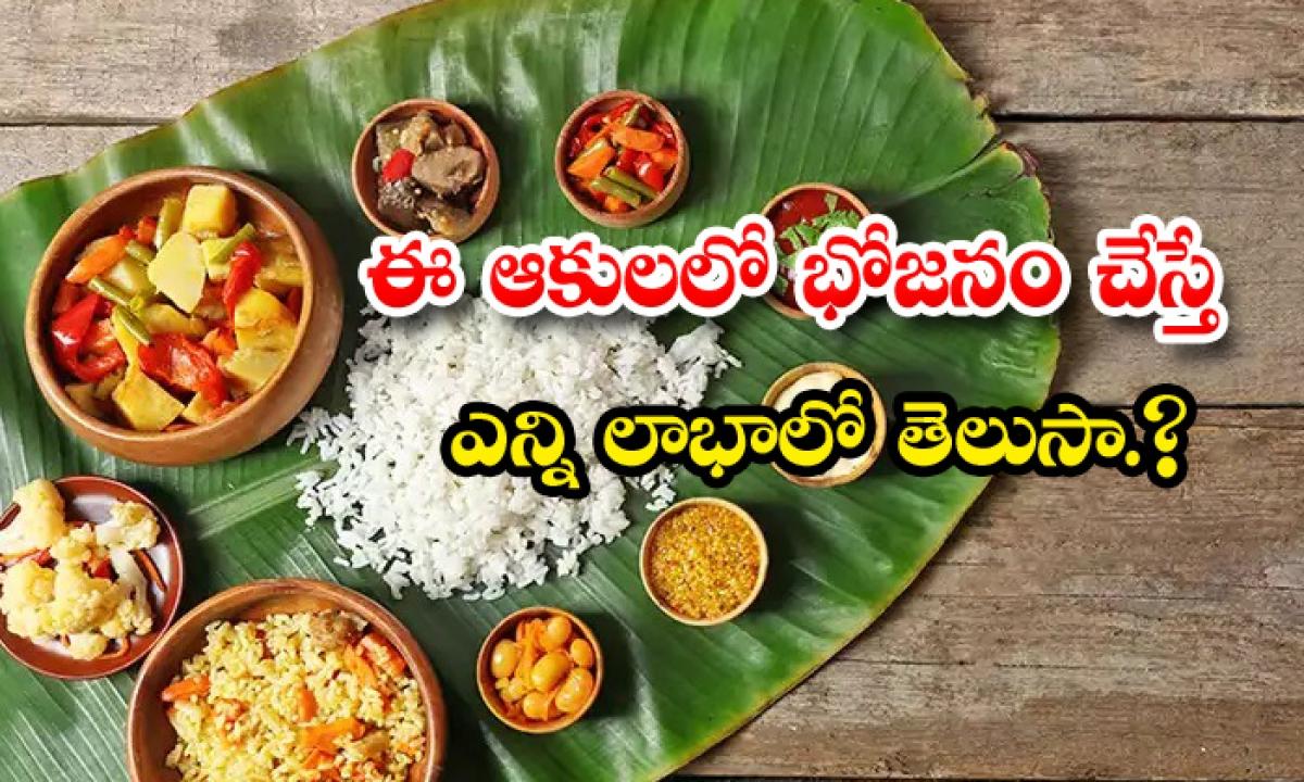 Banana Leaf Food Is Very Healthy Food-ఈ ఆకులలో భోజనం చేస్తే ఎన్ని లాభాలో తెలుసా-Latest News - Telugu-Telugu Tollywood Photo Image-TeluguStop.com