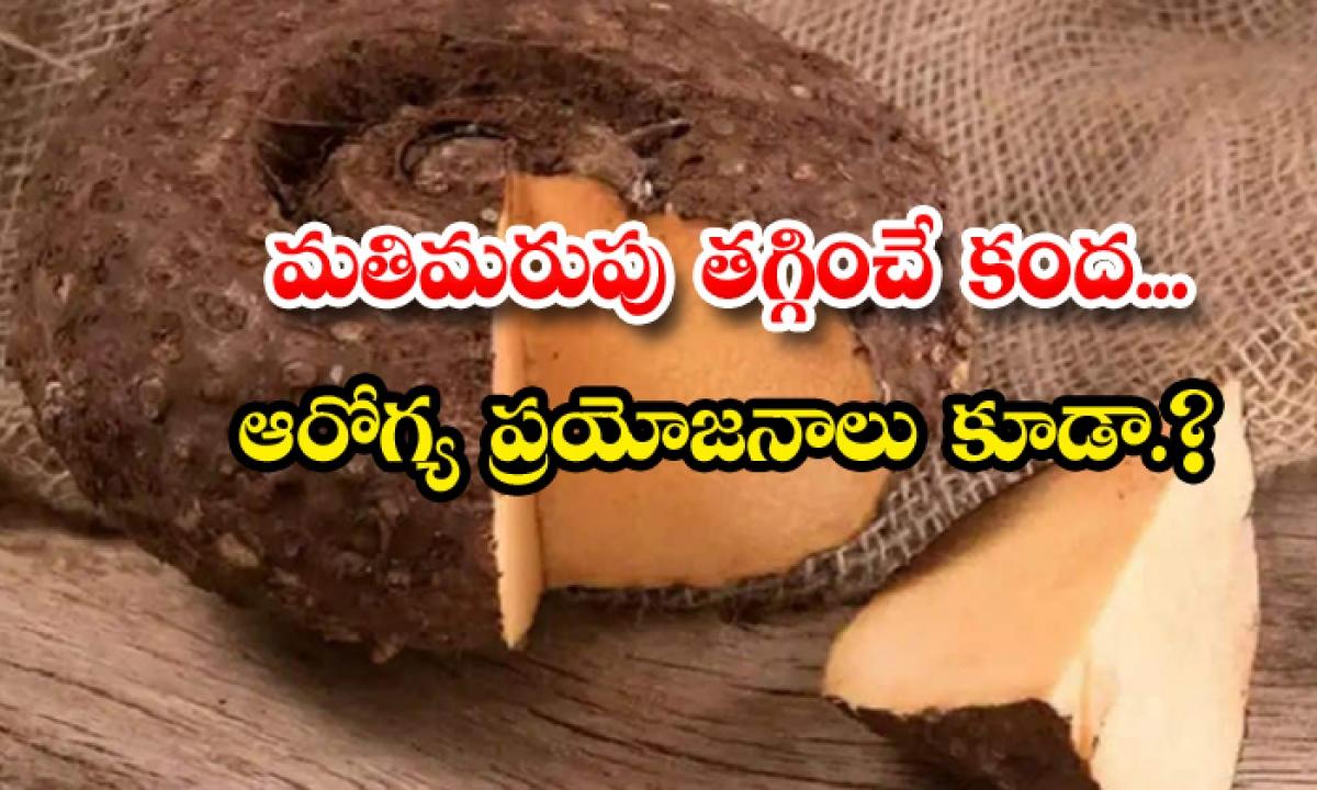 Elephant Yam Helps To Reduce Forgetfulness-మతిమరుపు తగ్గించే కంద.. ఆ ప్రయోజనాలు కూడా-Latest News - Telugu-Telugu Tollywood Photo Image-TeluguStop.com