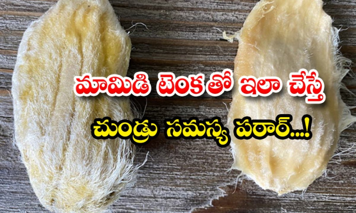 Mango Seed Helps To Reduce Dandruff-మామిడి టెంకతో ఇలా చేస్తే చుండ్రు సమస్య పరార్-Latest News - Telugu-Telugu Tollywood Photo Image-TeluguStop.com