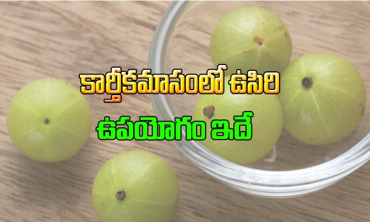 Amla Advantages In Kaarteekamaasam-కార్తీకమాసంలో ఉసిరి ఉపయోగం ఇదే-Devotional-Telugu Tollywood Photo Image-TeluguStop.com