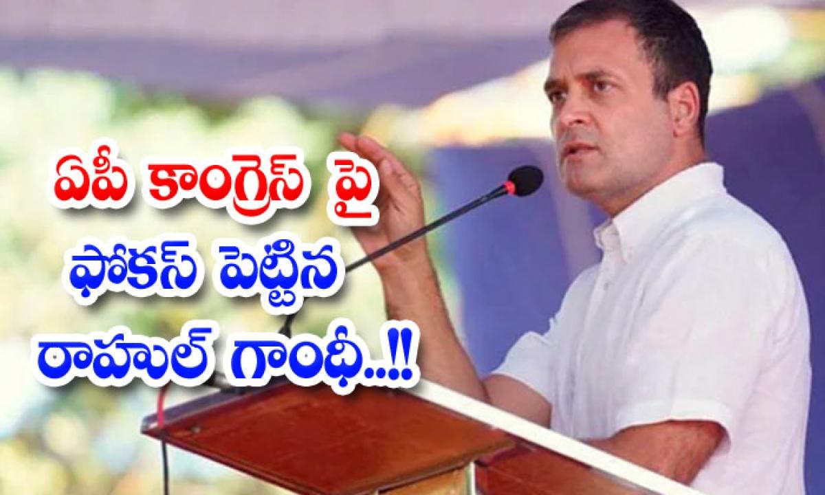 Rahul Gandhi Focus On Ap Congress-ఏపీ కాంగ్రెస్ పై ఫోకస్ పెట్టిన రాహుల్ గాంధీ..-Political-Telugu Tollywood Photo Image-TeluguStop.com