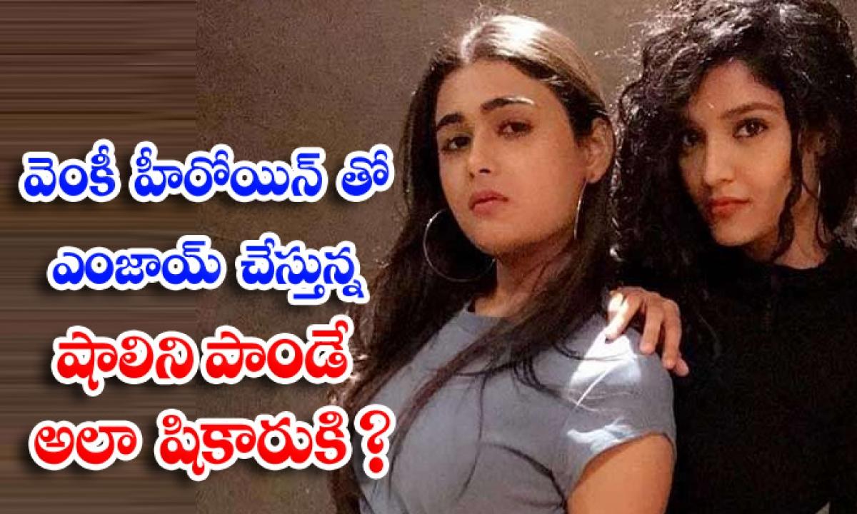 Arjun Reddy Heroine Shalini Pandey And Ritika Singh Funny Video Goes Viral-వెంకీ హీరోయిన్ తో ఎంజాయ్ చేస్తున్న షాలిని పాండే.. అలా షికారుకి-Latest News - Telugu-Telugu Tollywood Photo Image-TeluguStop.com