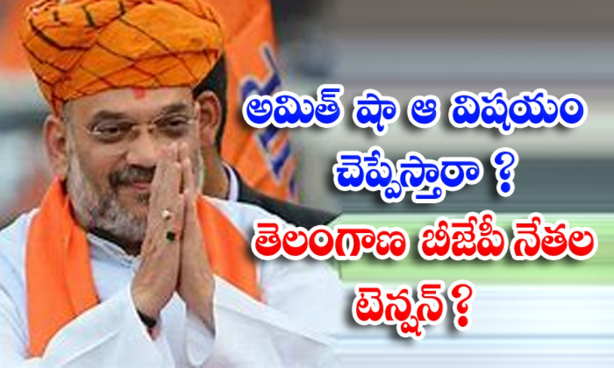 Attempts By Telangana Bjp Leaders To Criticize Trs With Amit Shah-అమిత్ షా ఆ విషయం చెప్పేస్తారా తెలంగాణ బీజేపీ నేతల టెన్షన్ -Political-Telugu Tollywood Photo Image-TeluguStop.com