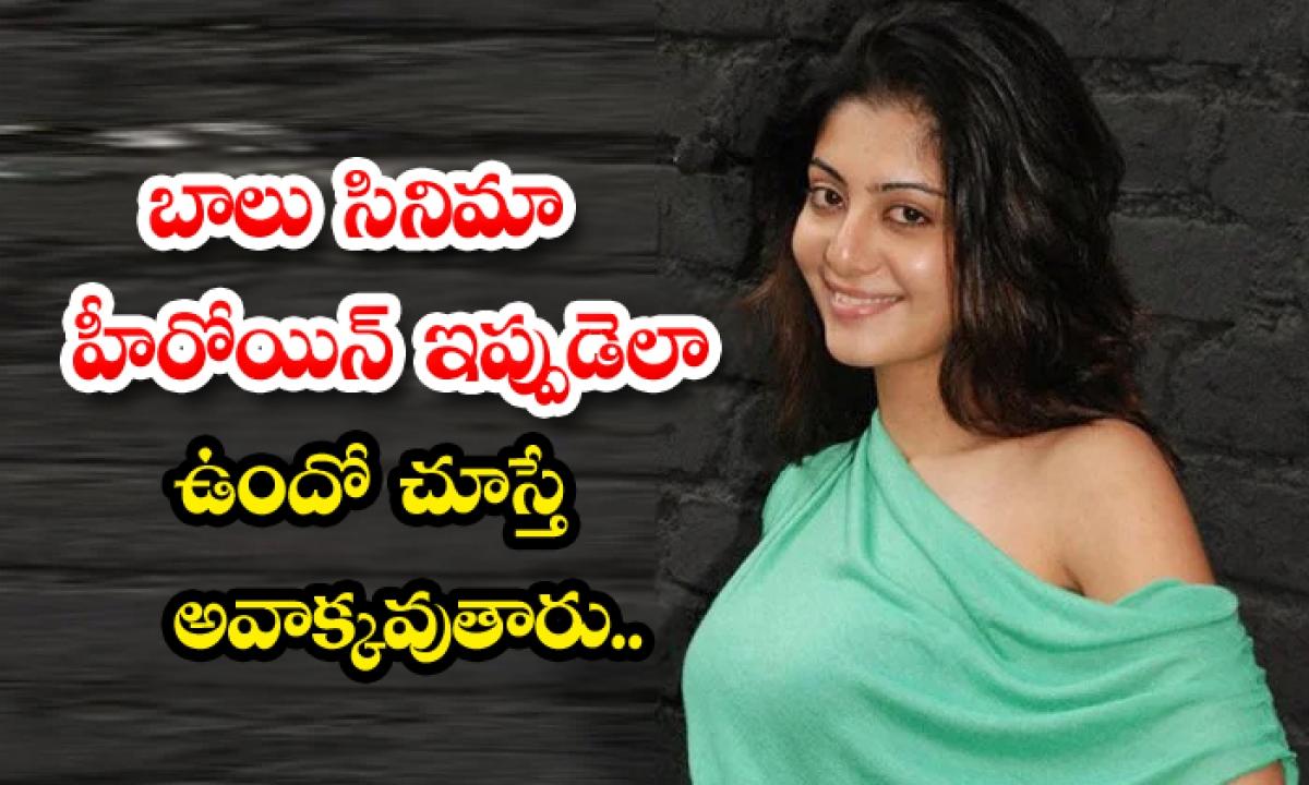 Balu Movie Fame Neha Oberoi Real Life And Movie Career News-TeluguStop.com