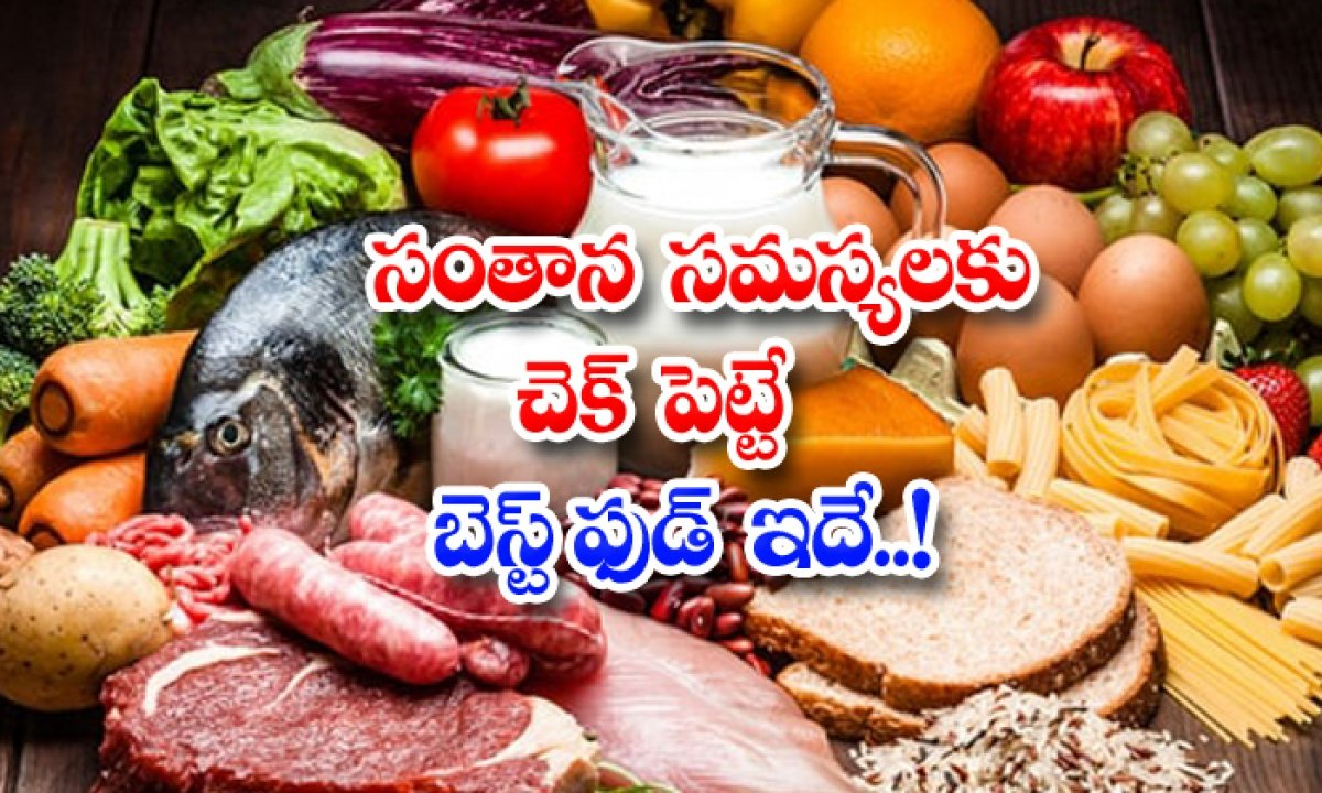 Best Food For Reducing Fertility Problems-TeluguStop.com