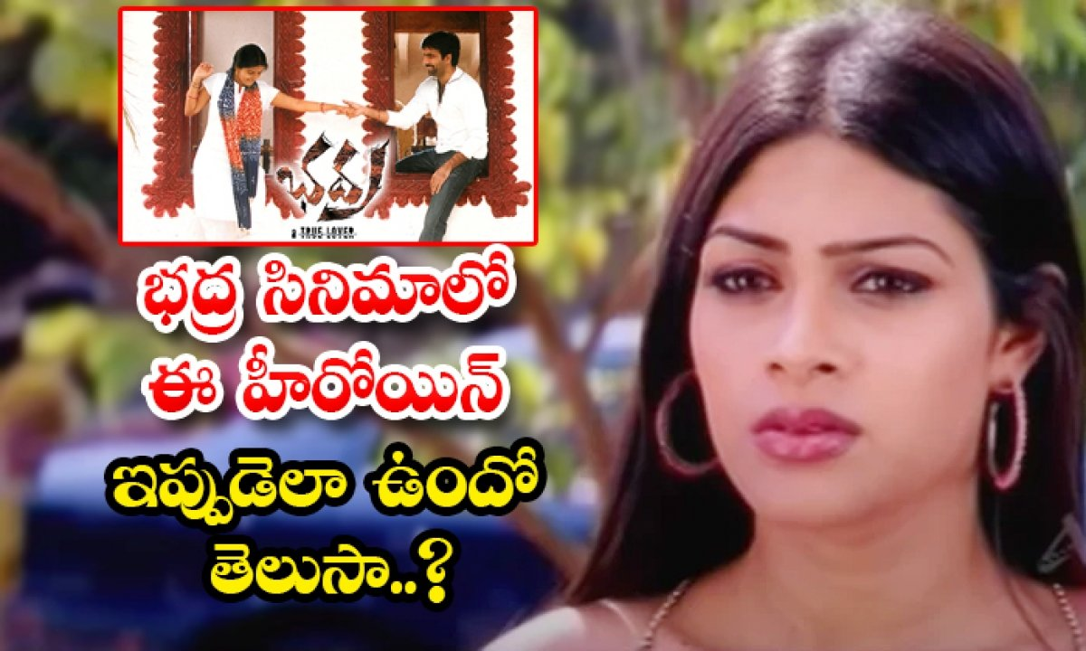 Bhadra Movie Fame Sanober Herekar Aziz Real Life Facts Telugu Actress  Tollywood SS Music Company Chief Operating Officer Boyapati Srinu Casting  Couch Commitm-TeluguStop