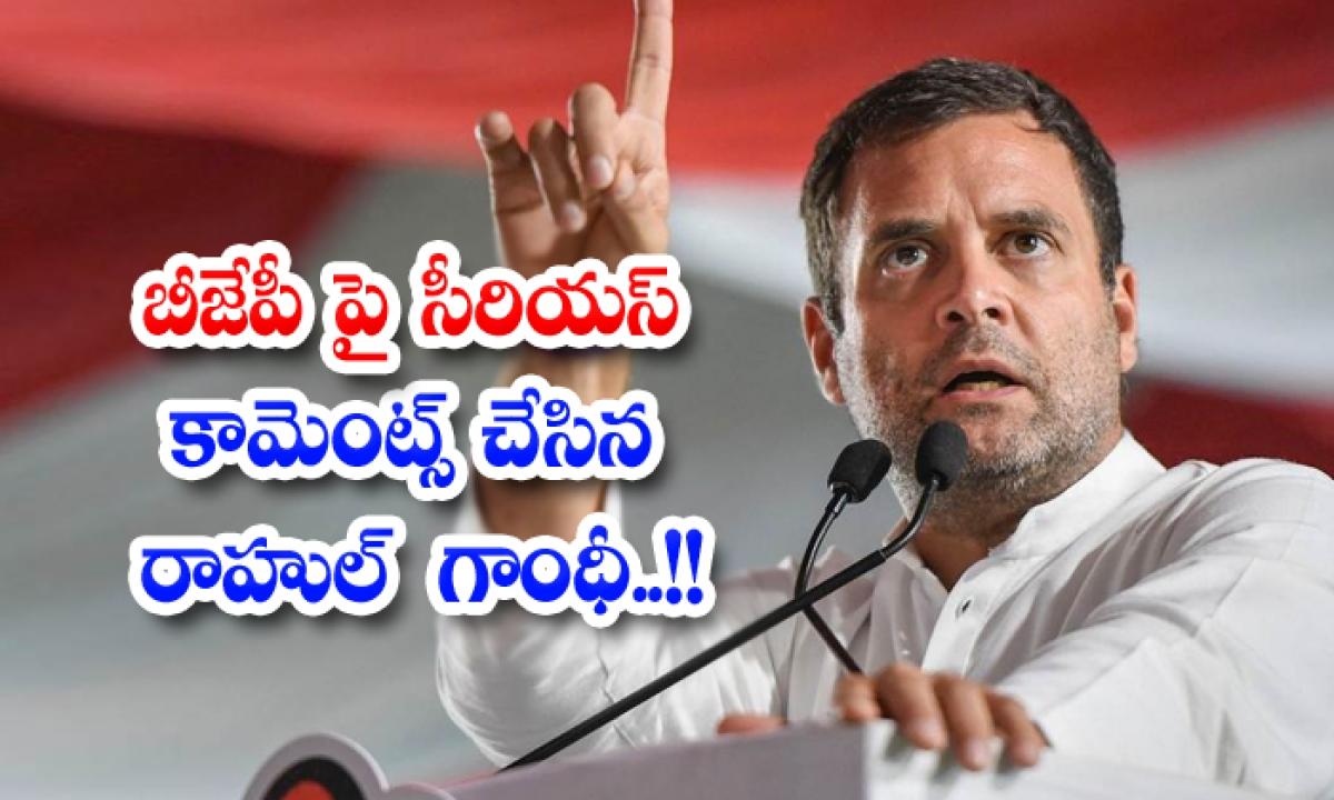 Rahul Gandhi Serious Comments On Bjp Party-బీజేపీ పై సీరియస్ కామెంట్స్ చేసిన రాహుల్ గాంధీ..-General-Telugu-Telugu Tollywood Photo Image-TeluguStop.com