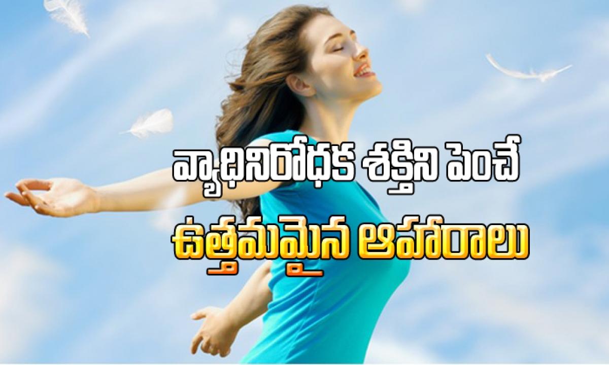 Best Foods For Healthy Immune System1-వ్యాధినిరోధక శక్తిని పెంచే ఉత్తమమైన ఆహారాలు-Telugu Stop Exclusive Top Stories-Telugu Tollywood Photo Image-TeluguStop.com