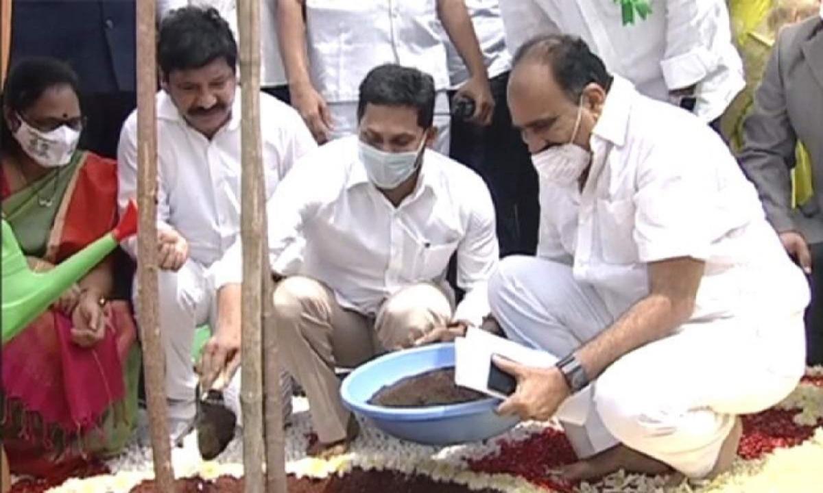 CM Jagan Launches Jagananna Pachathoranam At Mangalagiri AIIMS Premises-Latest News - Telugu-Telugu Tollywood Photo Image-TeluguStop.com