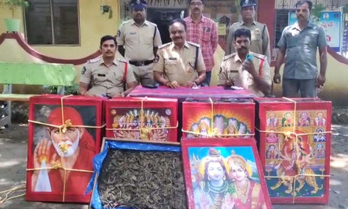 The Cannabis Smuggling With Photos Of God-దేవుని ఫోటోలతో గంజాయి స్మగ్లింగ్-Latest News - Telugu-Telugu Tollywood Photo Image-TeluguStop.com