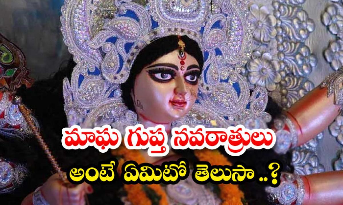 Magha Gupta Navratri 2021 Check Out Complete List And Significance-మాఘ గుప్త నవరాత్రులు అంటే ఏమిటో తెలుసా..-Latest News - Telugu-Telugu Tollywood Photo Image-TeluguStop.com