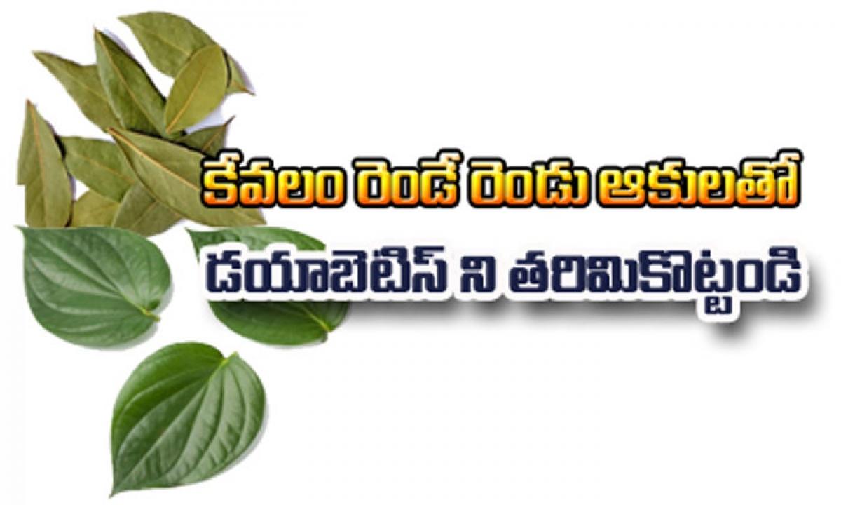 Only 2 Leaves Stop Diabetes-రెండే రెండు ఆకులతో డయాబెటిస్ ని తరిమికొట్టండి-Telugu Health - తెలుగు హెల్త్ టిప్స్ ,చిట్కాలు-Telugu Tollywood Photo Image-TeluguStop.com