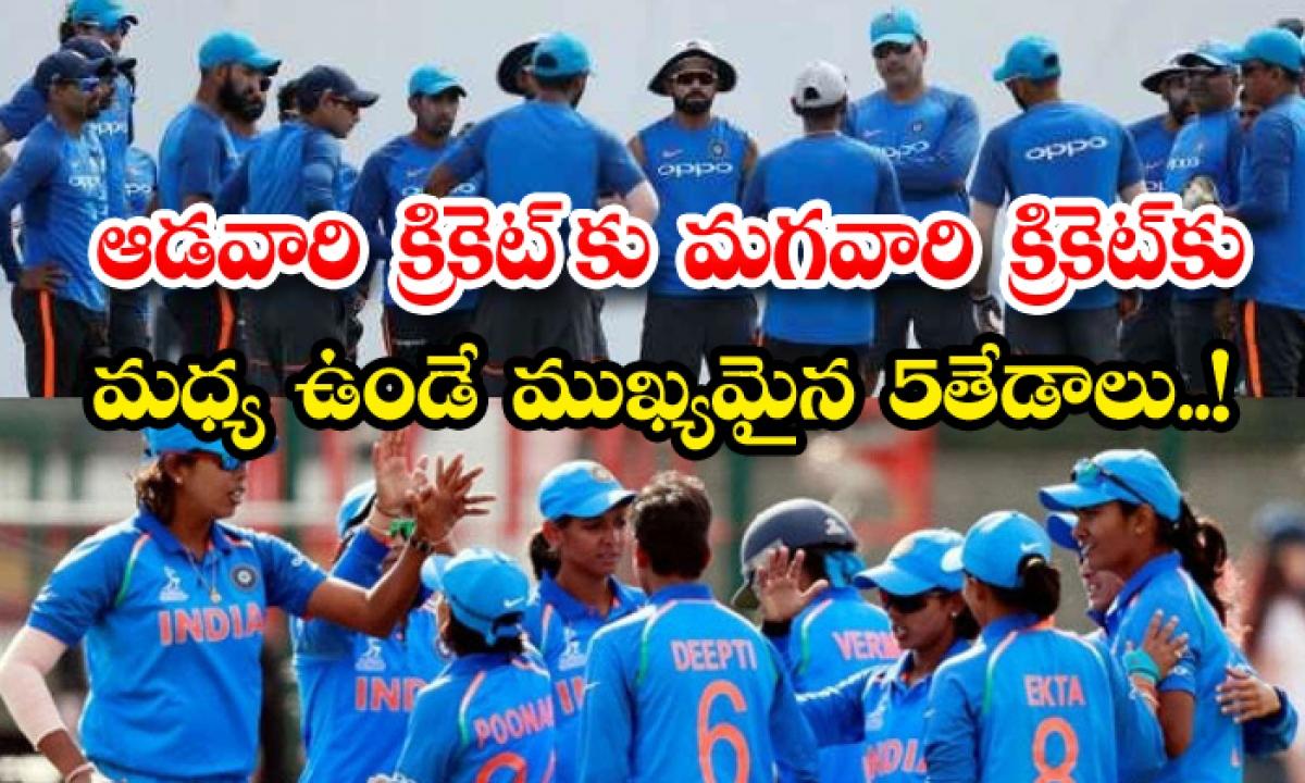 Differences Between Women And Men Cricket-ఆడ వారి క్రికెట్ కు మగవారి క్రికెట్ కు మధ్య  ఉండే ముఖ్యమైన 5 తేడాలు-Latest News - Telugu-Telugu Tollywood Photo Image-TeluguStop.com