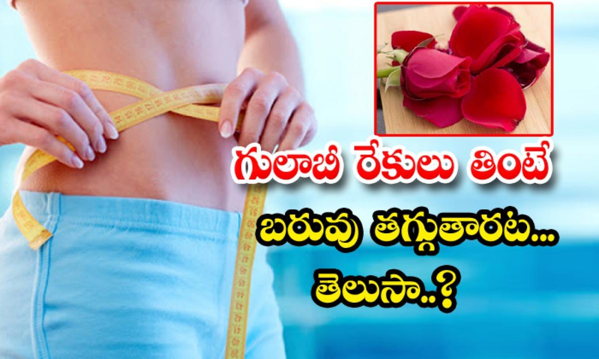 Wonderful Health Benefits Of Rose Petals-గులాబీ రేకులు తింటే బరువు తగ్గుతారట..తెలుసా-Latest News - Telugu-Telugu Tollywood Photo Image-TeluguStop.com
