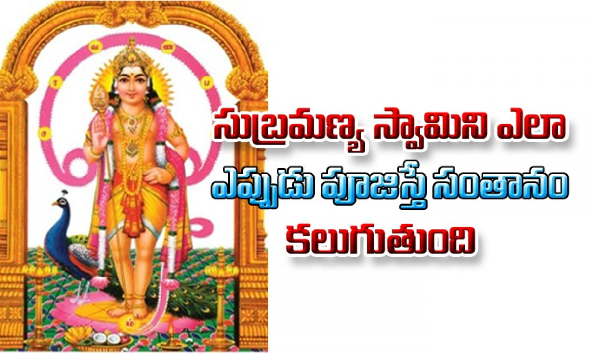 For Children Do Subramanya Swamy Puja-సుబ్రమణ్య స్వామిని ఎలా,ఎప్పుడు పూజిస్తె సంతానం కలుగుతుంది-Devotional-Telugu Tollywood Photo Image-TeluguStop.com
