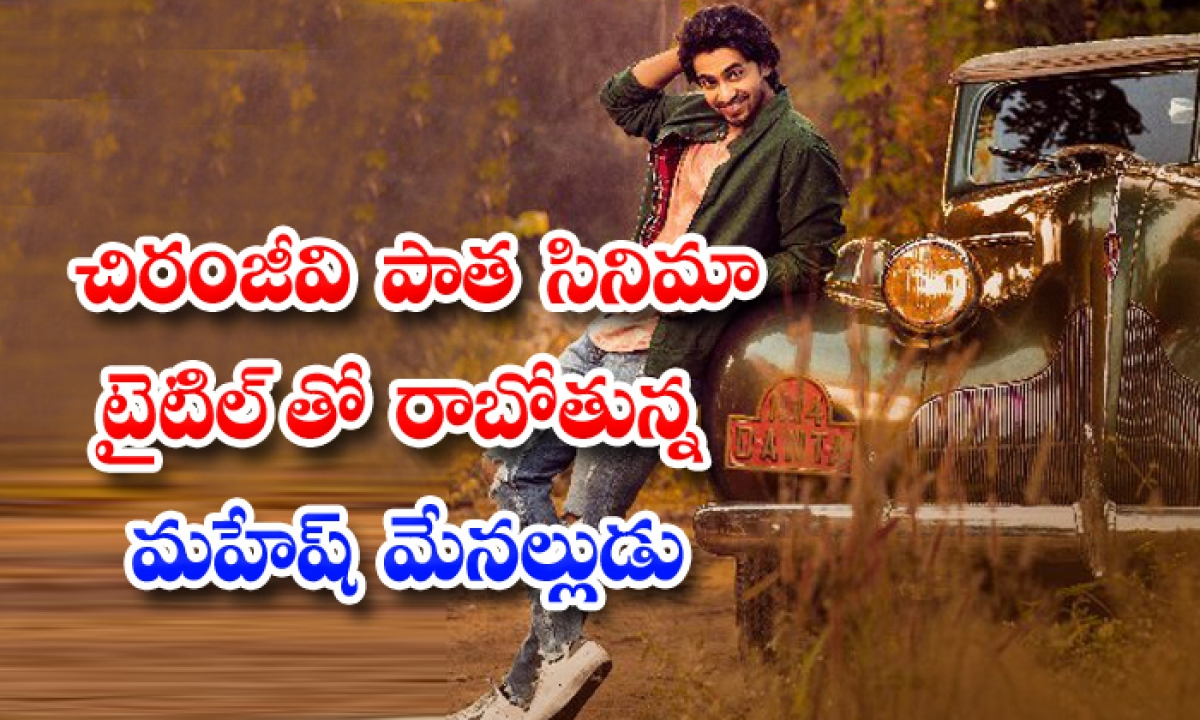 Galla Ashok Use Chiranjeevi Old Movie Title-చిరంజీవి పాత సినిమా టైటిల్ తో రాబోతున్న మహేష్ మేనల్లుడు-Latest News - Telugu-Telugu Tollywood Photo Image-TeluguStop.com