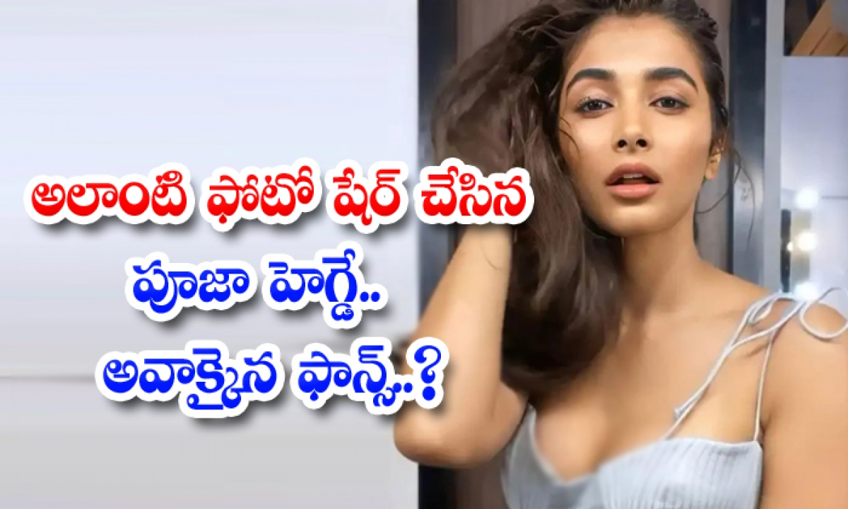 Pooja Hegde Hot Photos Goes Viral In Social Media-TeluguStop.com