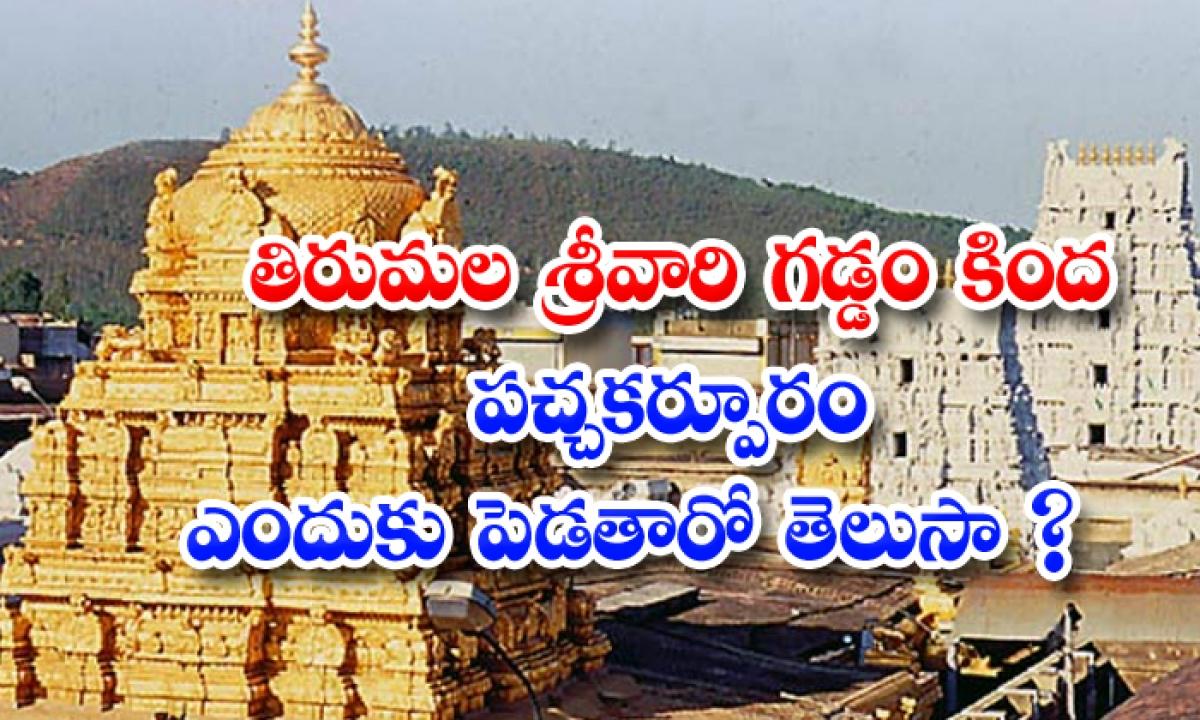 Why Greencamphor Applied To Tirumala Venkateswara Swamy-తిరుమల శ్రీవారి గడ్డం కింద పచ్చ కర్పూరం ఎందుకు పెడతారో తెలుసా-Devotional-Telugu Tollywood Photo Image-TeluguStop.com