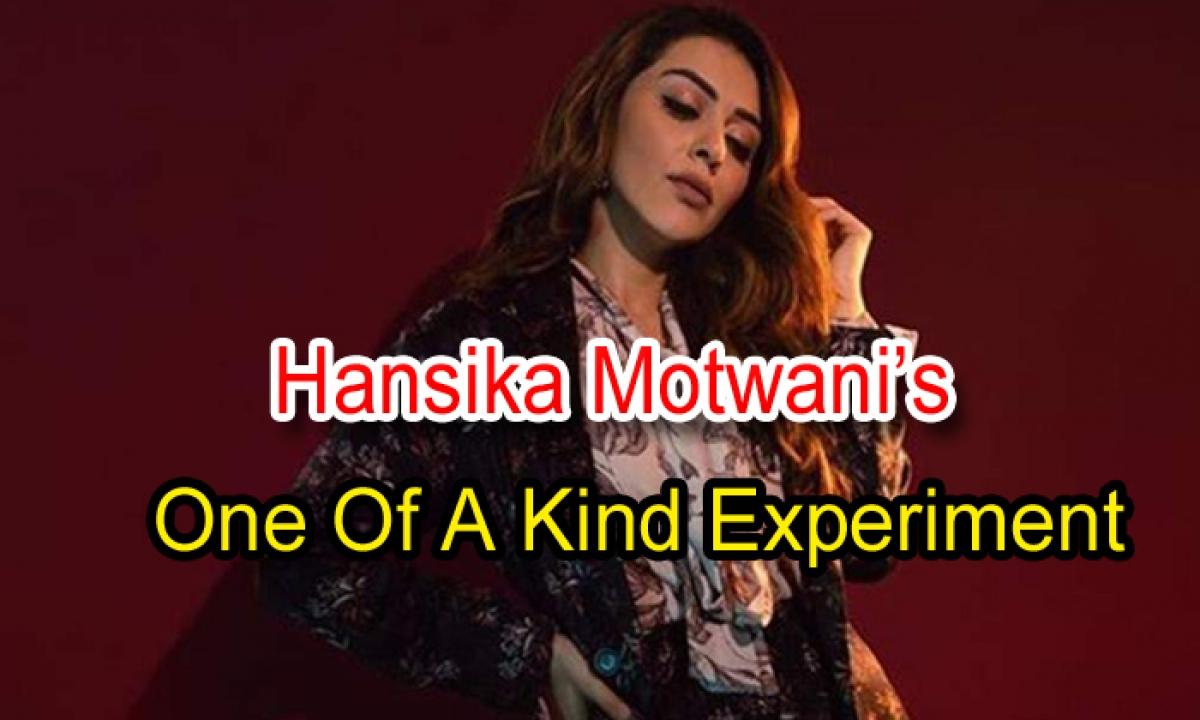 Hansika Motwani's One Of A Kind Experiment-TeluguStop.com