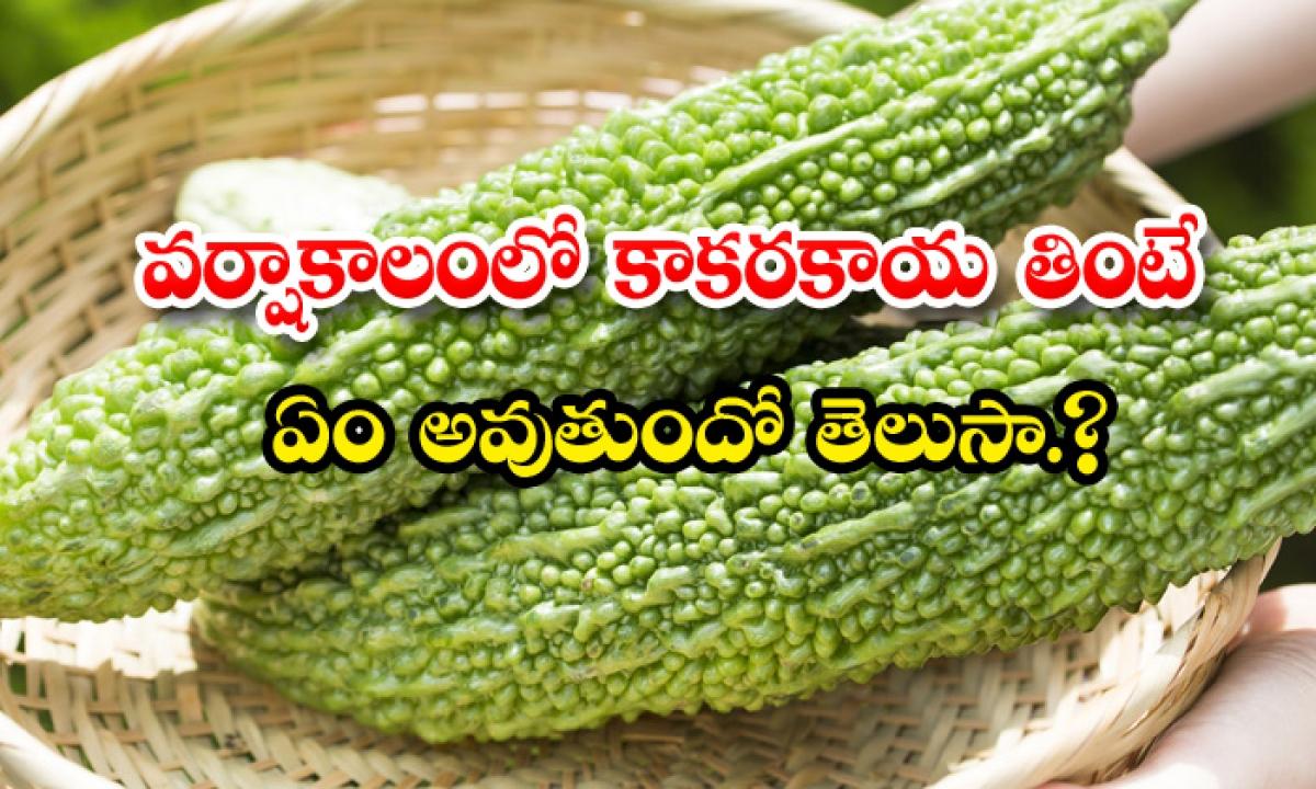 Health Benefits Of Bitter Gourd In Rainy Season-వర్షాకాలంలో కాకరకాయ తింటే ఏం అవుతుందో తెలుసా-Latest News - Telugu-Telugu Tollywood Photo Image-TeluguStop.com