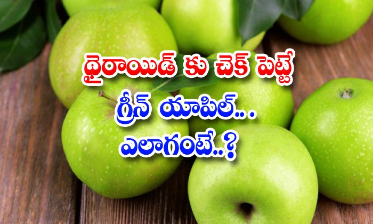 Green Apple Help To Get Rid Of Thyroid Problems-థైరాయిడ్కు చెక్ పెట్టే గ్రీన్ యాపిల్.. ఎలాగంటే-Latest News - Telugu-Telugu Tollywood Photo Image-TeluguStop.com