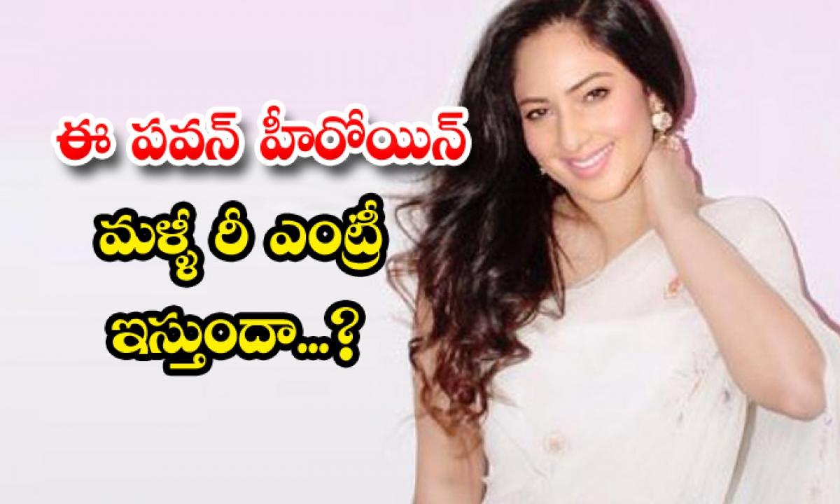 Puli Movie Fame Nikish Patel Re Entry News-TeluguStop.com