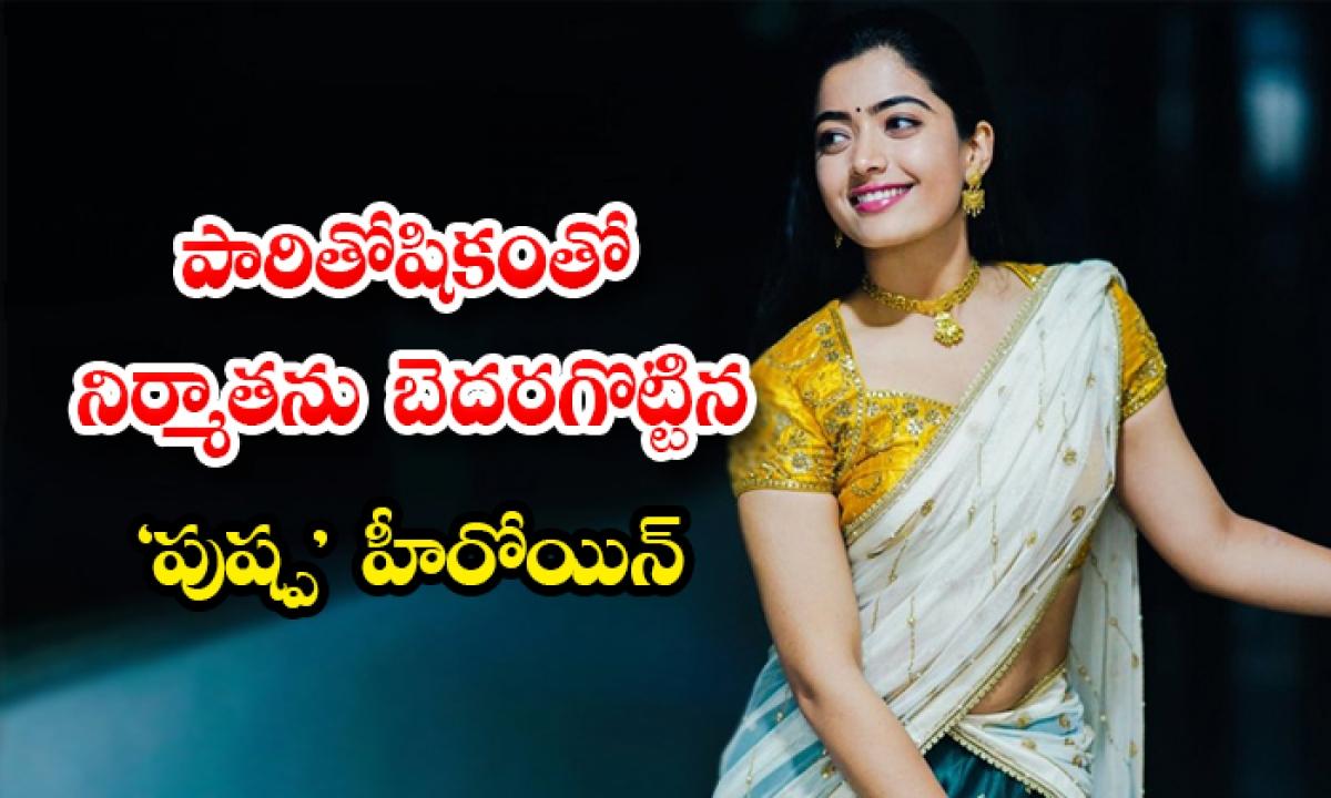 Heroine Rashmika Mandanna Remuneration News-పారితోషికంతో నిర్మాతను బెదరగొట్టిన పుష్ప' హీరోయిన్-Latest News - Telugu-Telugu Tollywood Photo Image-TeluguStop.com
