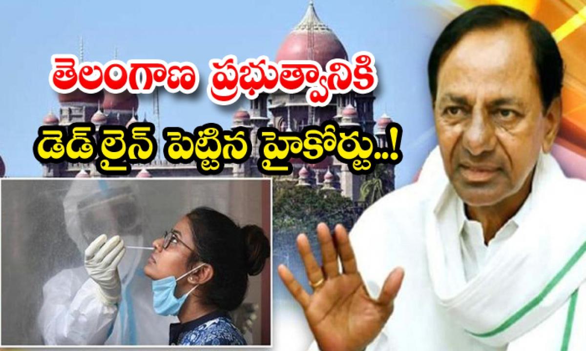 High Court Sets Deadline For Telangana Government-TeluguStop.com