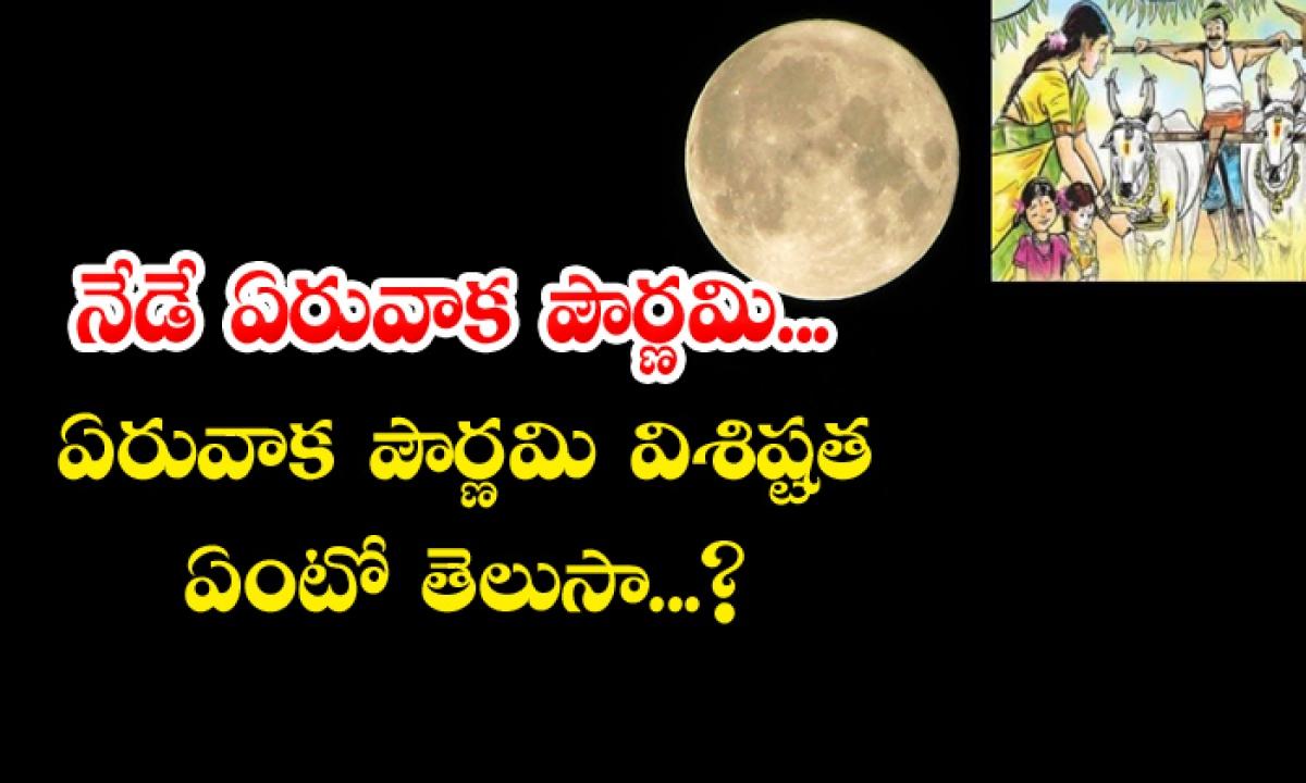 Importance And Significance Of Eruvaka Pournami 2021-నేడే ఏరువాక పౌర్ణమి… ఏరువాక పౌర్ణమి విశిష్టత ఏమిటో తెలుసా-Latest News - Telugu-Telugu Tollywood Photo Image-TeluguStop.com
