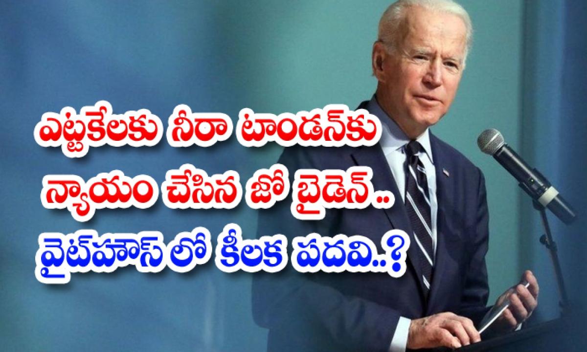Indian American Neera Tanden To Serve As Senior Adviser To Biden-TeluguStop.com