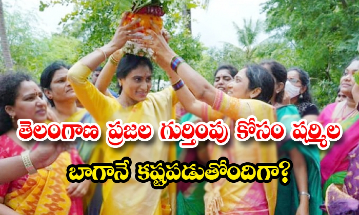 Is Sharmila Working Hard For The Recognition Of The People Of Telangana-తెలంగాణ ప్రజల గుర్తింపు కోసం షర్మిల బాగానే కష్టపడుతోందిగా-Latest News - Telugu-Telugu Tollywood Photo Image-TeluguStop.com