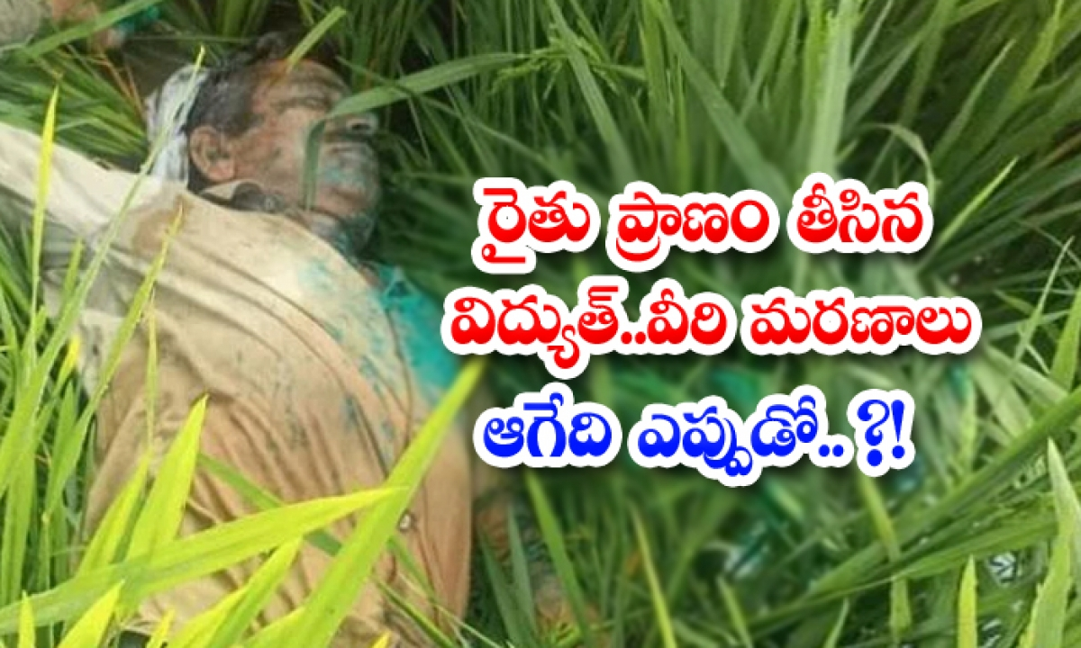 Electricity That Took The Life Of A Farmer-TeluguStop.com