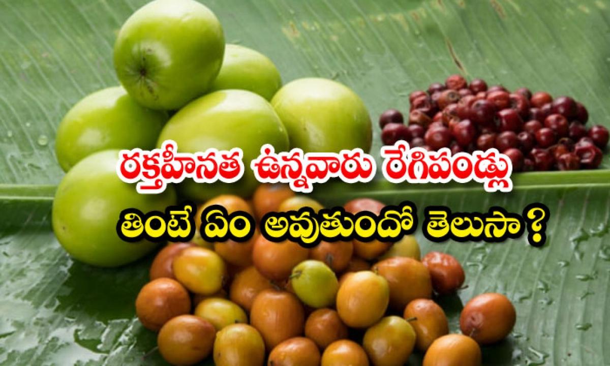 Jujube Helps To Reduce Anemia-రక్తహీనత ఉన్నవారు రేగిపండ్లు తింటే ఏం అవుతుందో తెలుసా-Latest News - Telugu-Telugu Tollywood Photo Image-TeluguStop.com