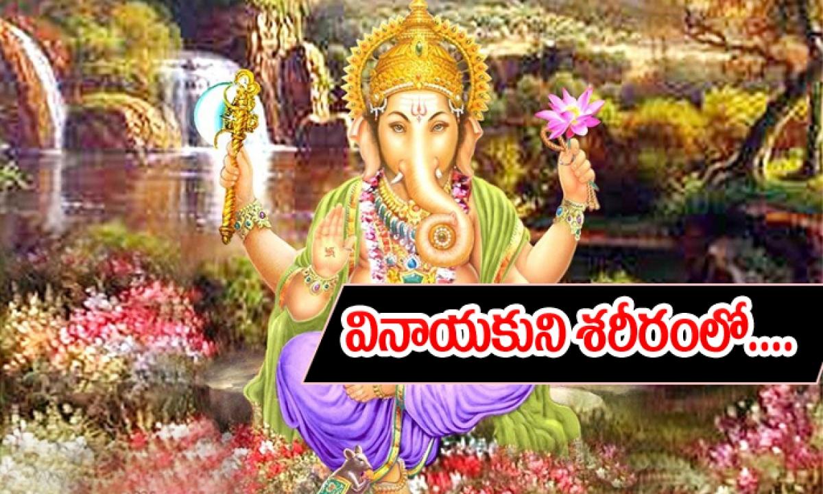 Lord Vinayakaspecialty-TeluguStop.com