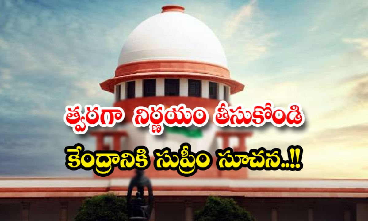 Make A Quick Decision Supreme Appeal To The Central Government-TeluguStop.com