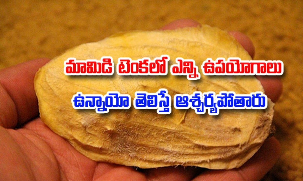 Mango Endocarp Health Benefits2-మామిడి టెంకలో ఎన్ని ఉపయోగాలు ఉన్నాయో తెలిస్తే ఆశ్చర్యపోతారు-Telugu Health-Telugu Tollywood Photo Image-TeluguStop.com