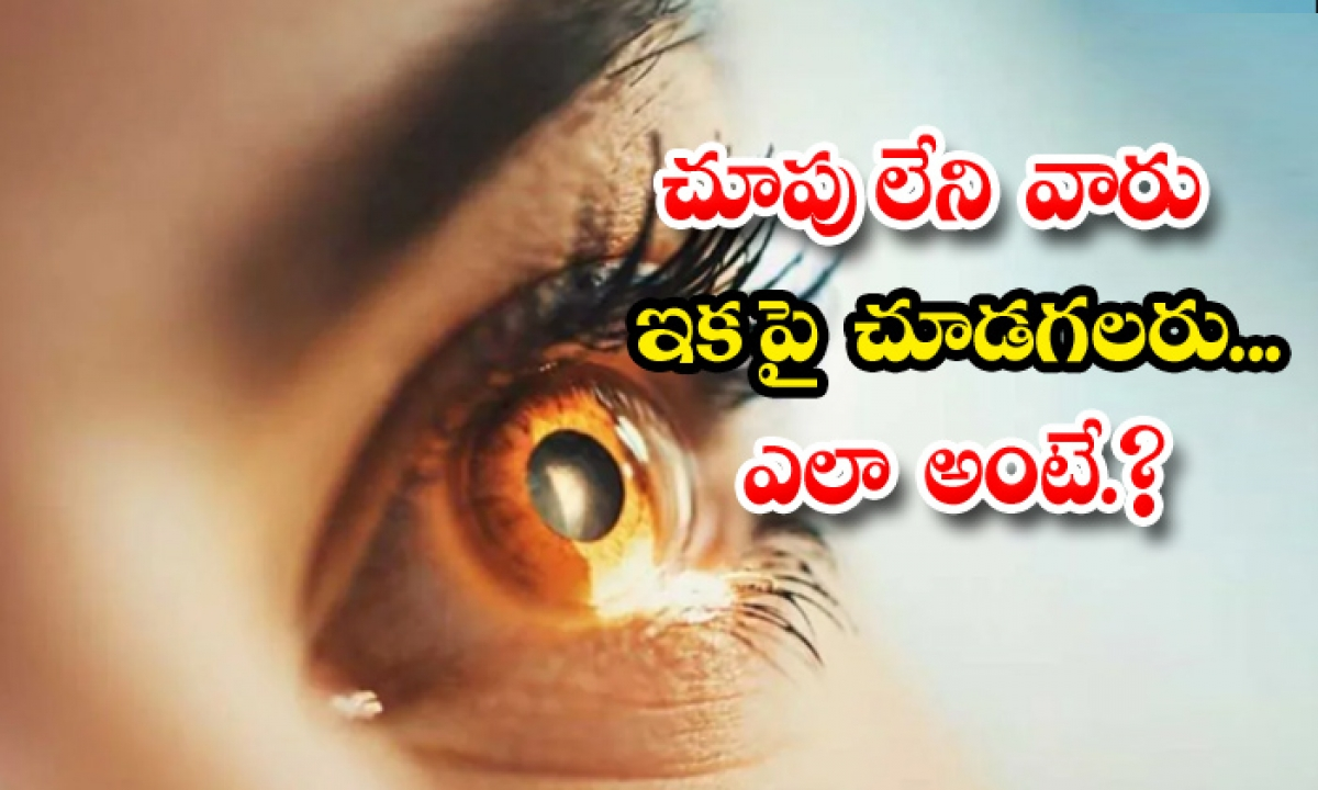 Melbourne Scientists Invented Bionic Eye Vision-చూపు లేని వారు ఇకపై చూడగలరు.. ఎలా అంటే-General-Telugu-Telugu Tollywood Photo Image-TeluguStop.com