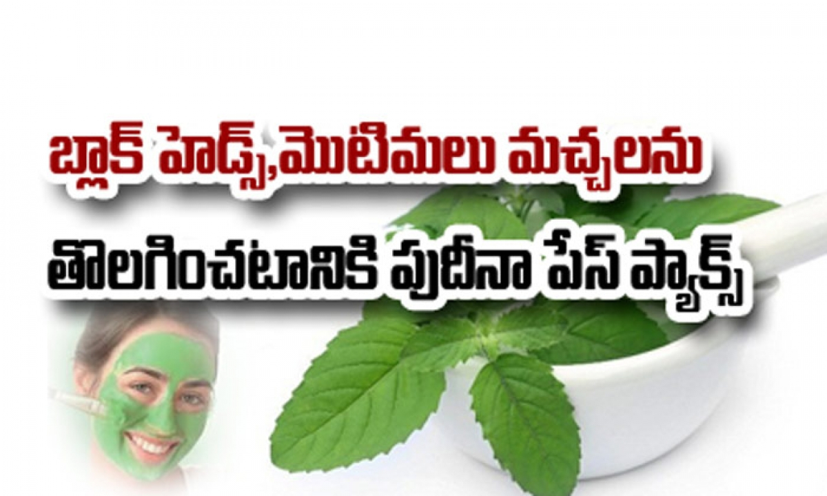 Pudina Face Pack For Pimples And Blackheads-TeluguStop.com