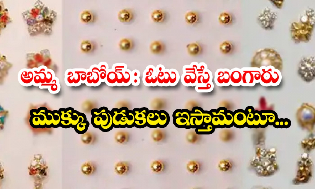 Corporator Of Nose Rings To The Women Voters In Kadapa-TeluguStop.com