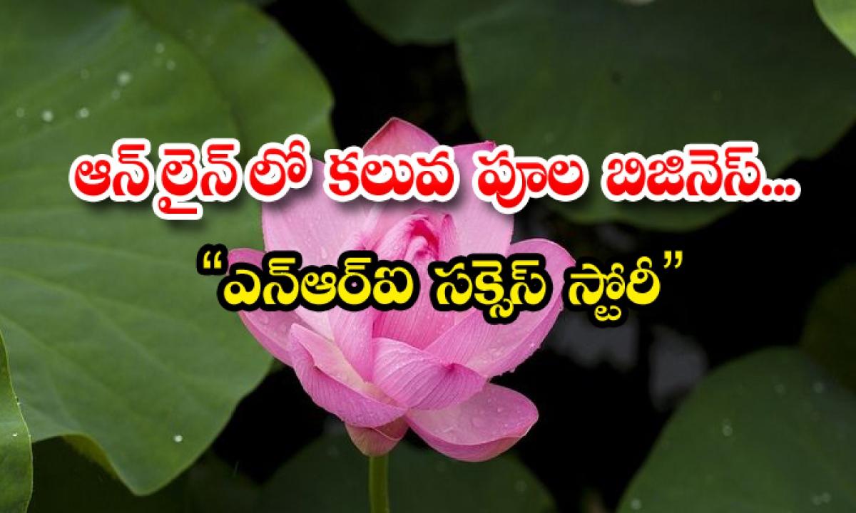 Nri Online Florals Business Kerala-కరోనాతో ఉద్యోగం గోవిందా: ఆన్లైన్లో కలువ పూల బిజినెస్.. '' ఎన్ఆర్ఐ సక్సెస్ స్టోరీ ''-Latest News - Telugu-Telugu Tollywood Photo Image-TeluguStop.com