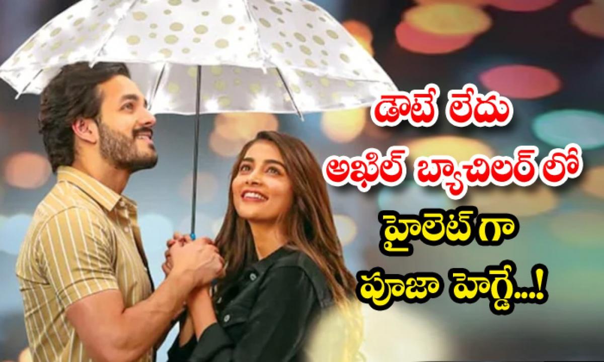 Pooja Hegde Highlight For Akhil Bachelor Movie-డౌటే లేదు అఖిల్ బ్యాచిలర్ లో హైలెట్ గా పూజా హెగ్డే..-Latest News - Telugu-Telugu Tollywood Photo Image-TeluguStop.com