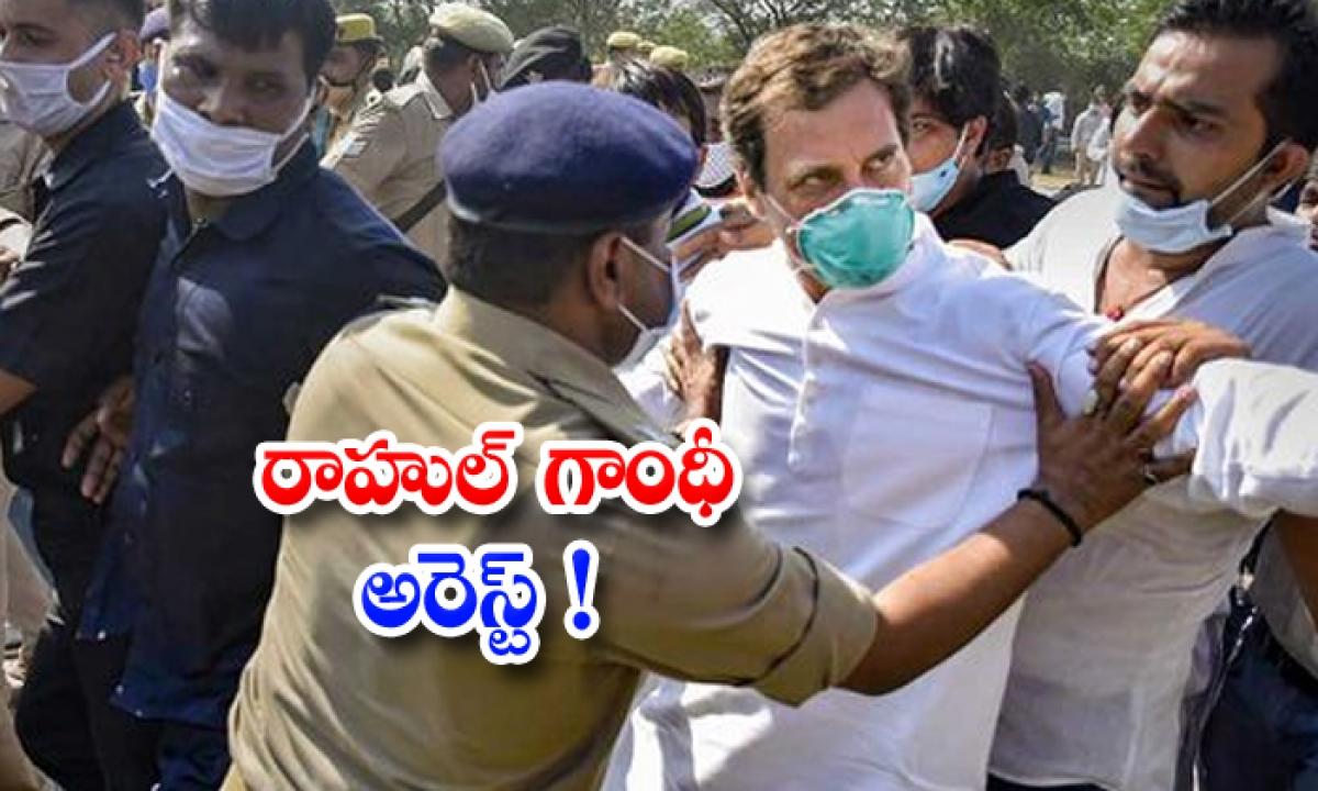 Rahul Gandhi Arrested-రాహుల్ గాంధీ అరెస్ట్-Breaking/Featured News Slide-Telugu Tollywood Photo Image-TeluguStop.com