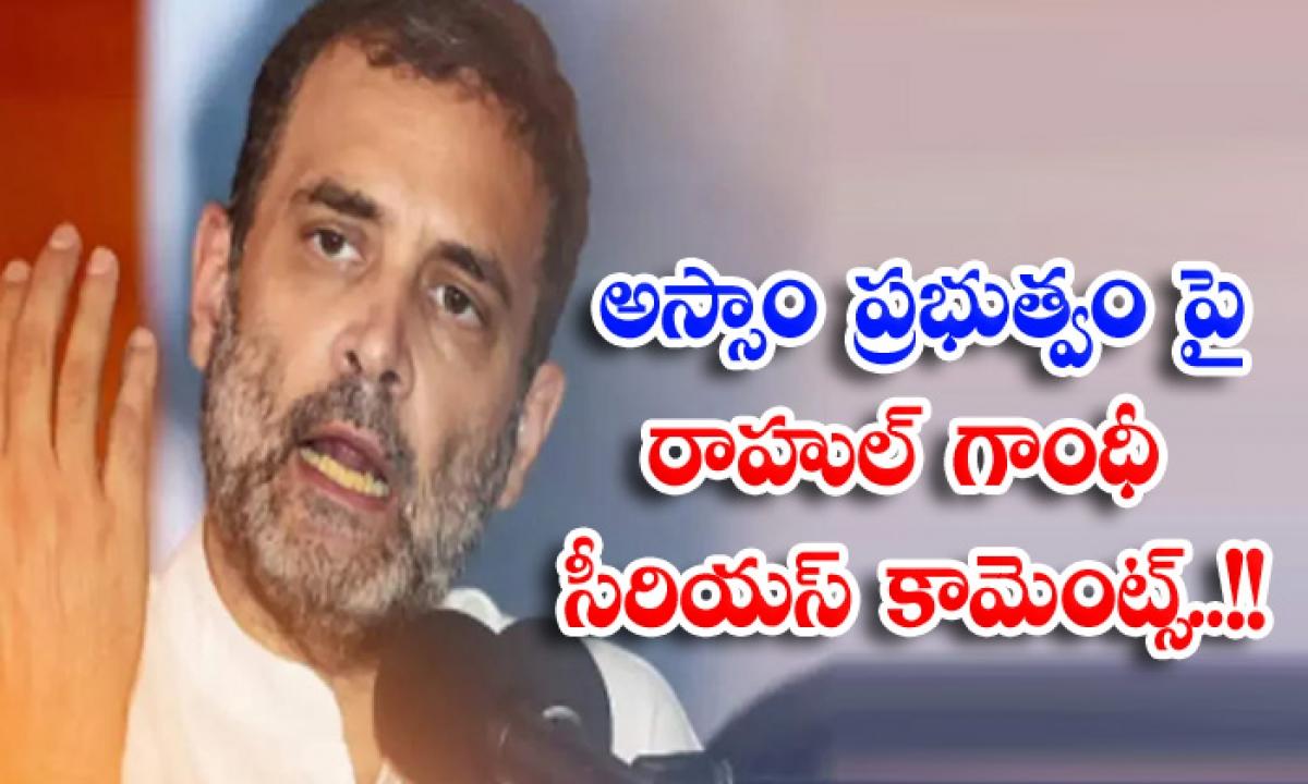 Rahul Gandhi Makes Serious Comments On Assam Government-అస్సాం ప్రభుత్వం పై రాహుల్ గాంధీ సీరియస్ కామెంట్స్..-Political-Telugu Tollywood Photo Image-TeluguStop.com