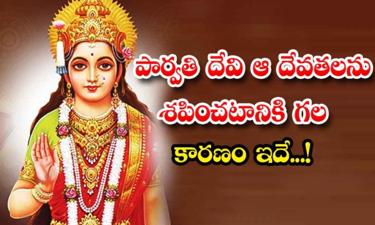 This Is The Reason Why Goddess Parvati Curse Gods-TeluguStop.com