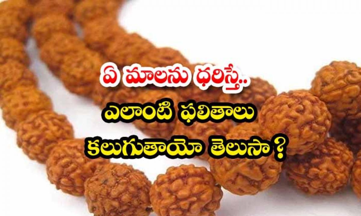 Malanu Daristhe Elanti Phalithalu Untayee-TeluguStop.com