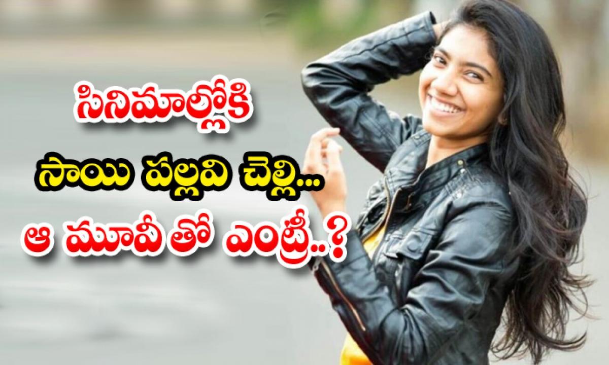 Saipallavi Sister Puja Kannan Make Her Debut Movies-TeluguStop.com